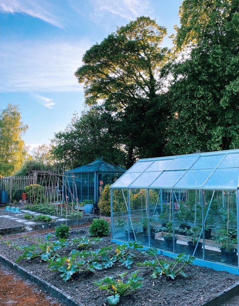 Vegetable Gardening Course